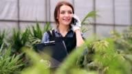 Female gardener talking on the phone in greenhouse video