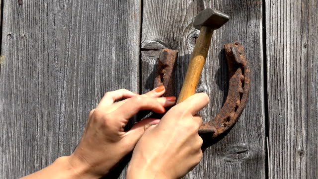 female hand hammering nails and hang rusty horse shoe symbol of luck on garden house door. video
