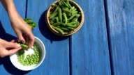 female hand hulled organic peas in plate blue wooden table video