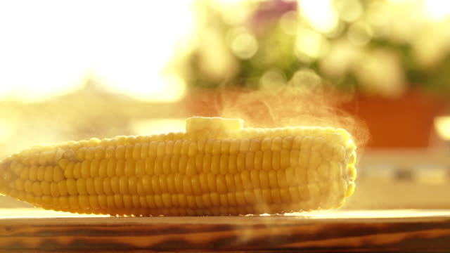 Female hand placing a piece of butter on hot freshly boiled corn video