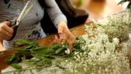 female hands cutting shears white flowers video