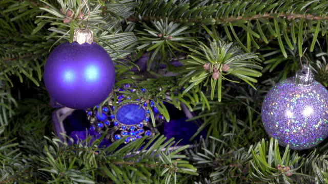 female hands find a New Year's gift lies among branches of a Christmas fir-tree video