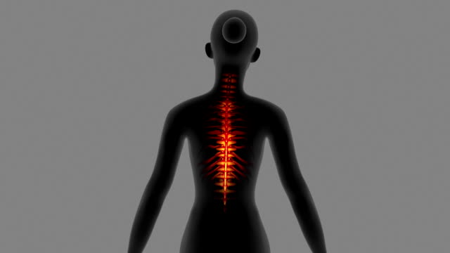 Female Having Back Pain With Visible Skeleton video