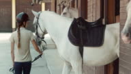 DS Female horse rider leading her white horse out of the stable video