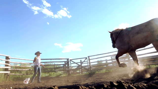 Female horse trainer breaking mustang in ranch corral video