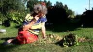 Female old gardener woman talk on mobile phone between harvested organic. video
