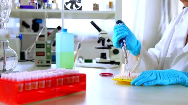 Female Researcher Loads Dna Samples For Pcr Analysis video