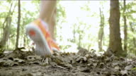 Female runner jogging quickly through woods on off road trail video