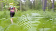 LD Female runner passing a fern in the forest video