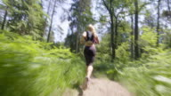 TS Female runner running down the forest path video