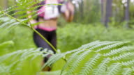 LD Female running a trail marathon crossing a forest clearing video