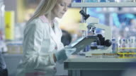 Female scientist is using a microscope and a tablet while working in a laboratory. video