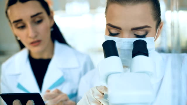 Female scientist looking through a microscope in laboratory video