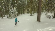 AERIAL: Female snowboarder riding through the forest video