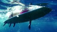 Female surfer paddling video
