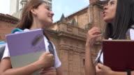 Female Teen Students Socializing video