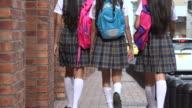 Female Teen Students Walking video