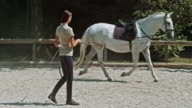 DS Female trainer training a saddled horse in round pen video