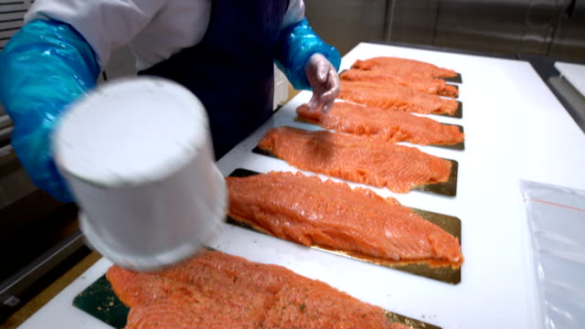 A female worker sprinkles the spices on the salmon fillet on the fish factory video