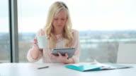 Female working on digital tablet video
