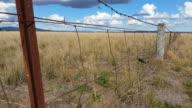 Fence Australian Landscape video