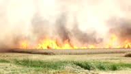 Feuer video