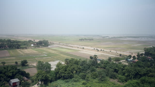 Few houses among tropical vegetation and flooded paddy fields in the background video