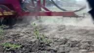 Field video