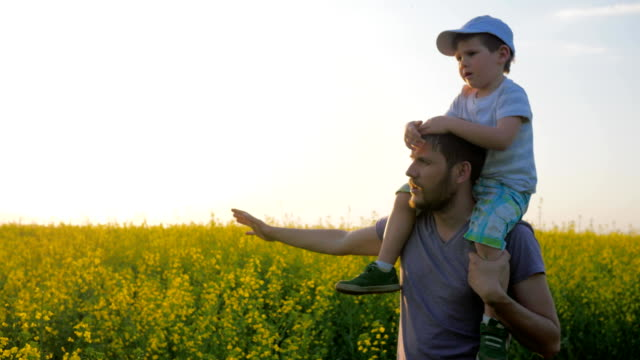field walk of daddy and kid in sunny weather, son on father's shoulders in blossom, meadow flowers and child with dad video