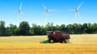 Field, wind power and harvester video