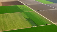 Fields with various types of agriculture, aerial shot video