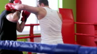 Fight training kickboxers video