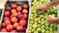 Figs and Nectarines At Fruit Stand video