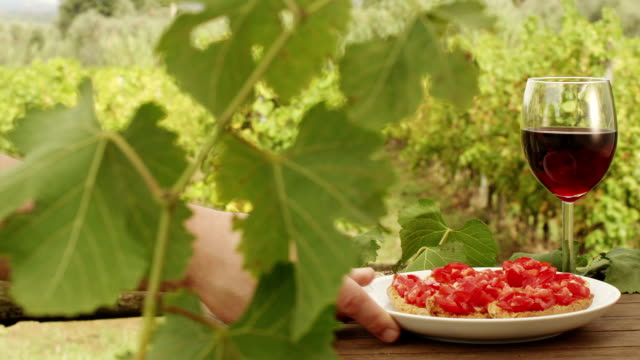Filling Glass with Wine in Vineyard. v6. Close-Up. video