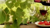 Filling Glasses with Wine in Vineyard. video
