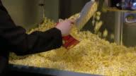Filling up a bucket of popcorn video