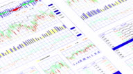 Financial data and charts 1.2 video