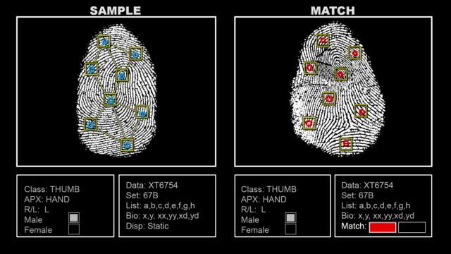 Finger Print Matching Interface Screen (HD) video
