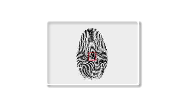 Finger Print Matching Interface Screen video