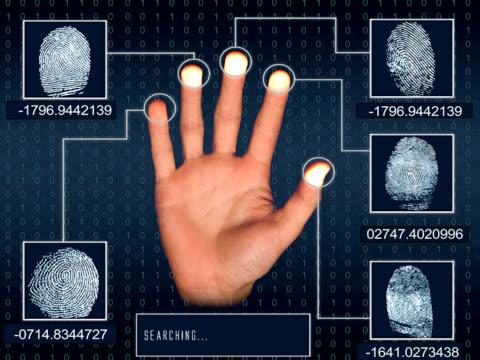 Fingerprint searching video
