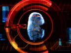 Fingerprint Security Computer Scan video