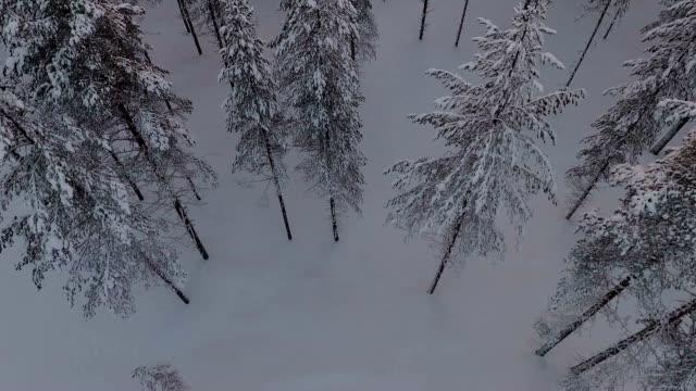 Finnish Lapland aerial footage video