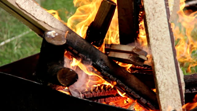 fire burning in the brazier, bonfire, firewood burning in the fire video