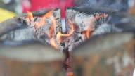 Fire burns in the hollowed stump video