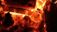 Fire. Coals of Firewood is beautifully burning in fireplace. video