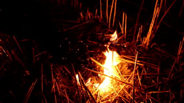 Fire in the field video