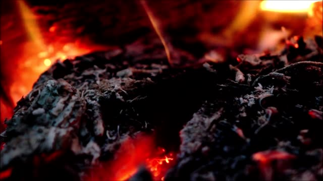 Fire. Macro. Bonfire in the night forest. Closeup. video