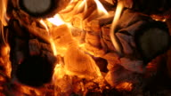 Fire of burning wood, close-up video