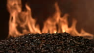 Fire roasted coffee beans, slow motion video