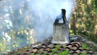 Fire smoke from the roof chimney, Old vintage roof above old countryside house or kitchen oven video